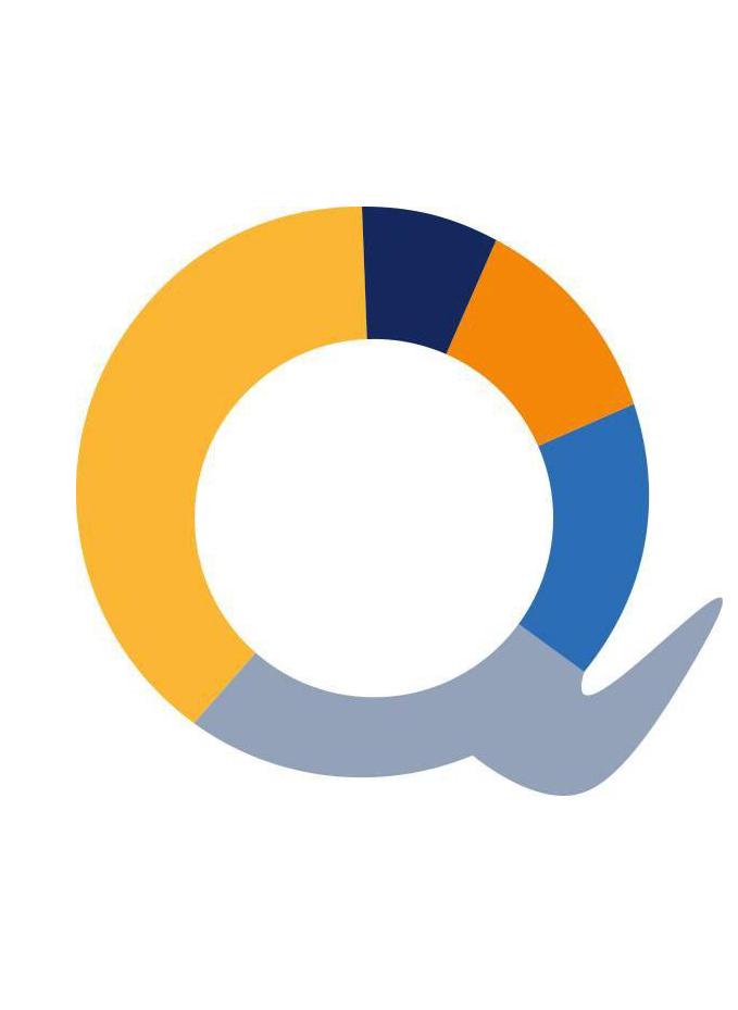 Q_Logo_Rechteckt